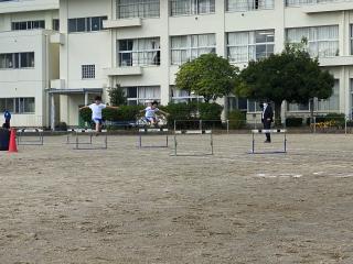 6_hurdles.png