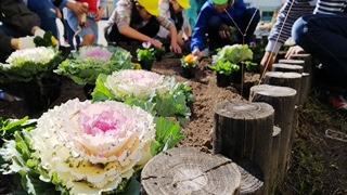 花いっぱい運動1.jpg