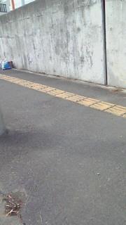 西多賀北清掃活動2.jpg