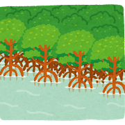 mangrove_hayashi.png
